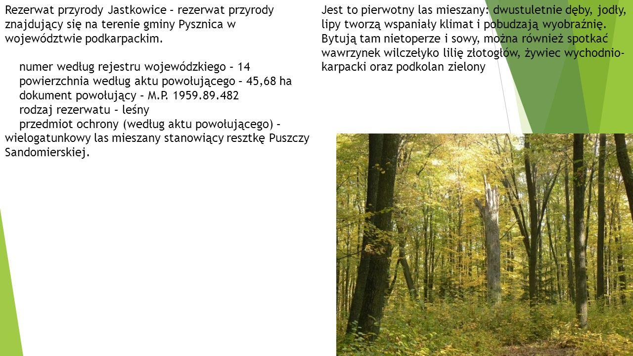 Rezerwat przyrody Jastkowice – rezerwat przyrody znajdujący się na terenie gminy Pysznica w województwie podkarpackim.