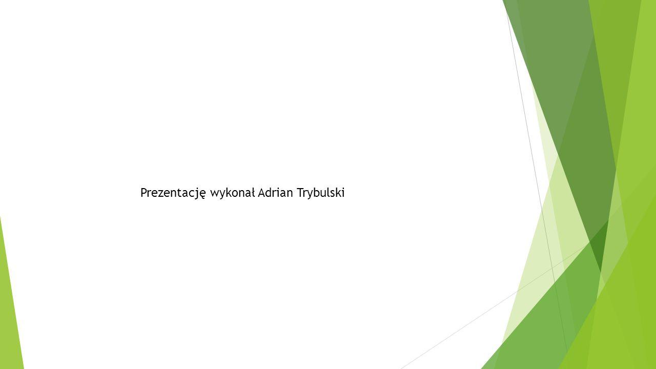 Prezentację wykonał Adrian Trybulski