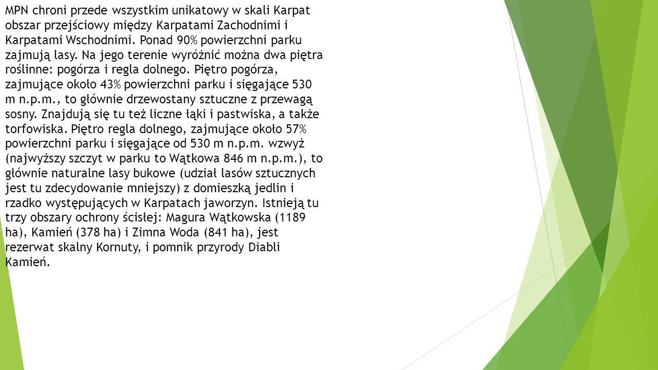 MPN chroni przede wszystkim unikatowy w skali Karpat obszar przejściowy między Karpatami Zachodnimi i Karpatami Wschodnimi.