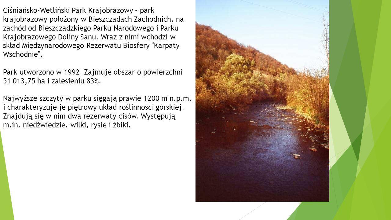 Ciśniańsko-Wetliński Park Krajobrazowy – park krajobrazowy położony w Bieszczadach Zachodnich, na zachód od Bieszczadzkiego Parku Narodowego i Parku Krajobrazowego Doliny Sanu.