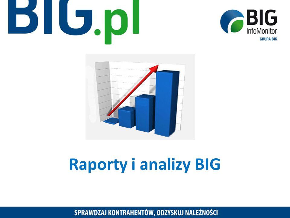 Raporty i analizy BIG