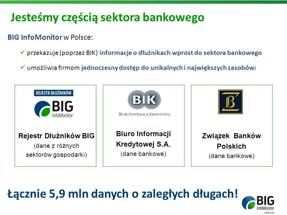 BIG InfoMonitor w Polsce: przekazuje (poprzez BIK) informacje o dłużnikach wprost do sektora bankowego umożliwia firmom jednoczesny dostęp do unikalny