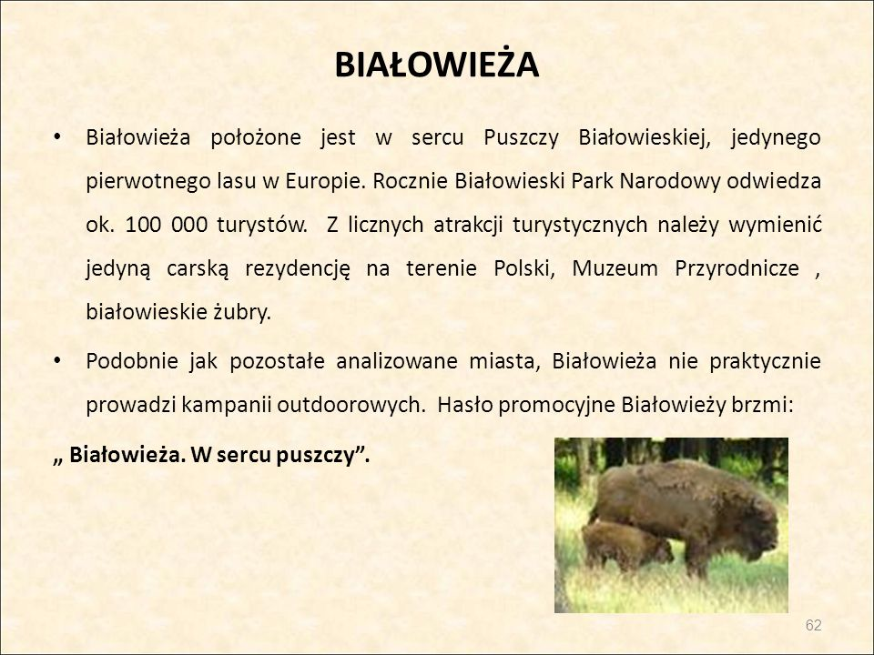 BIAŁOWIEŻA Białowieża położone jest w sercu Puszczy Białowieskiej, jedynego pierwotnego lasu w Europie. Rocznie Białowieski Park Narodowy odwiedza ok.