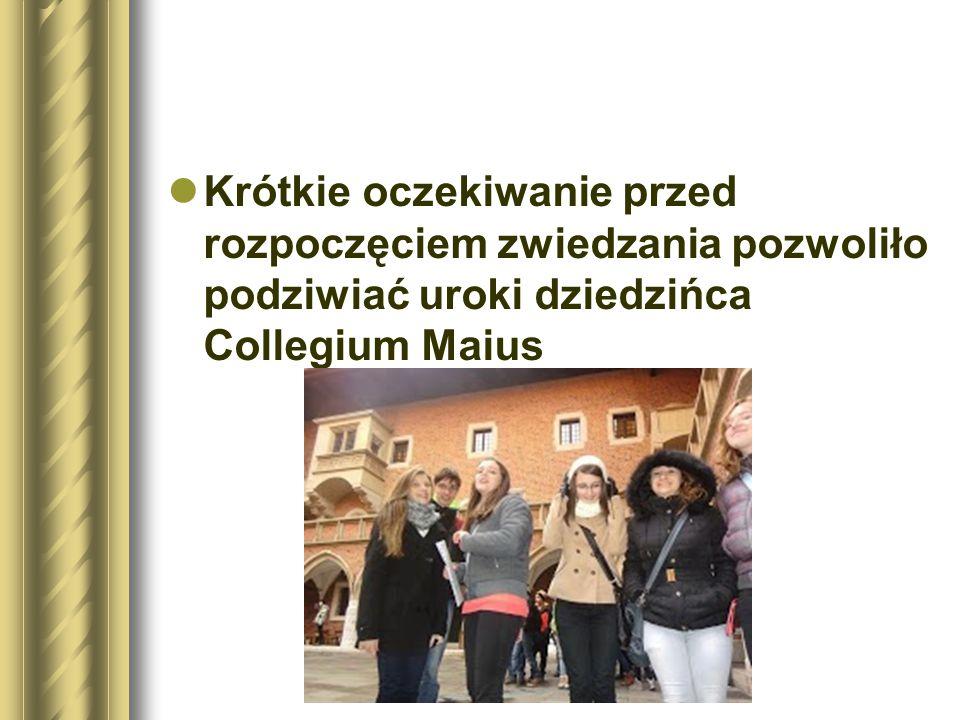 Krótkie oczekiwanie przed rozpoczęciem zwiedzania pozwoliło podziwiać uroki dziedzińca Collegium Maius