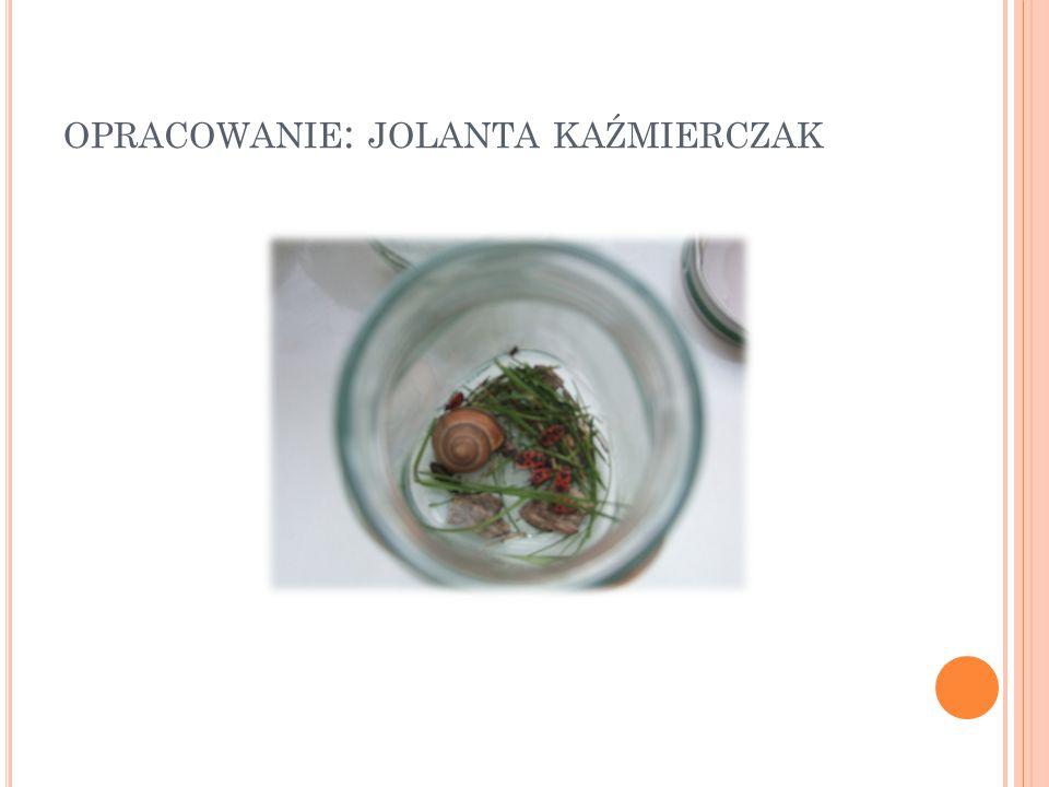 OPRACOWANIE : JOLANTA KAŹMIERCZAK