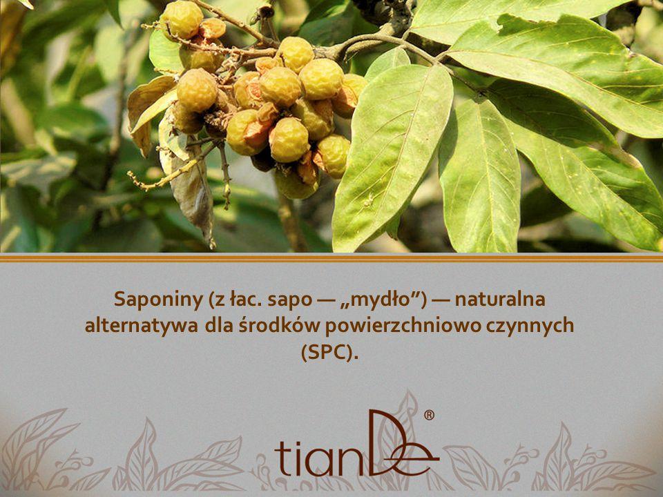"""Saponiny (z łac. sapo — """"mydło ) — naturalna alternatywa dla środków powierzchniowo czynnych (SPC)."""