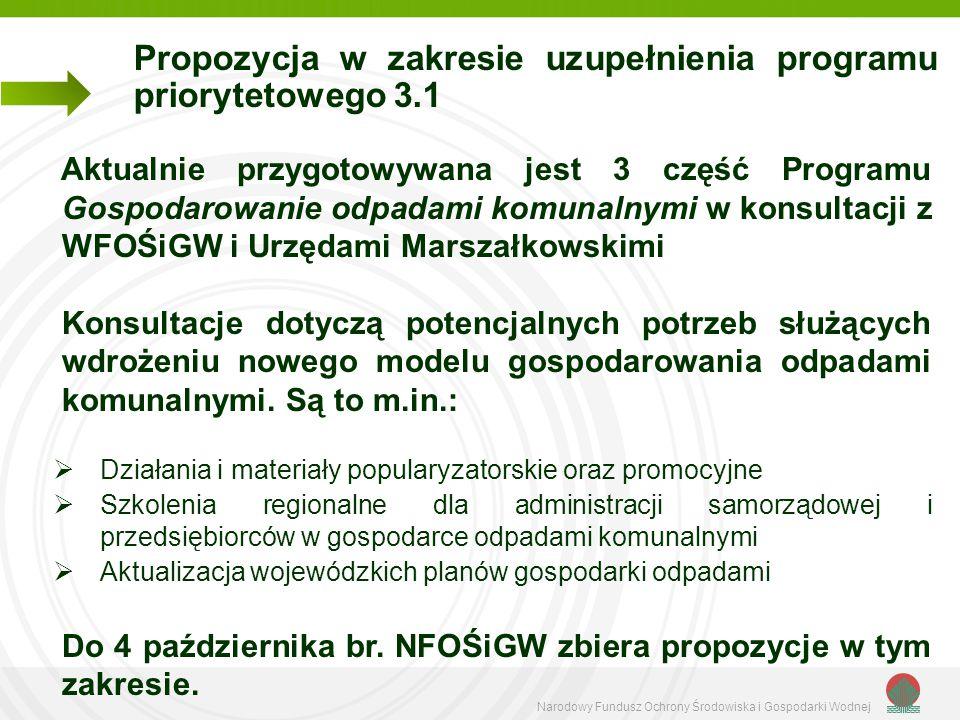 Narodowy Fundusz Ochrony Środowiska i Gospodarki Wodnej Propozycja w zakresie uzupełnienia programu priorytetowego 3.1 Aktualnie przygotowywana jest 3