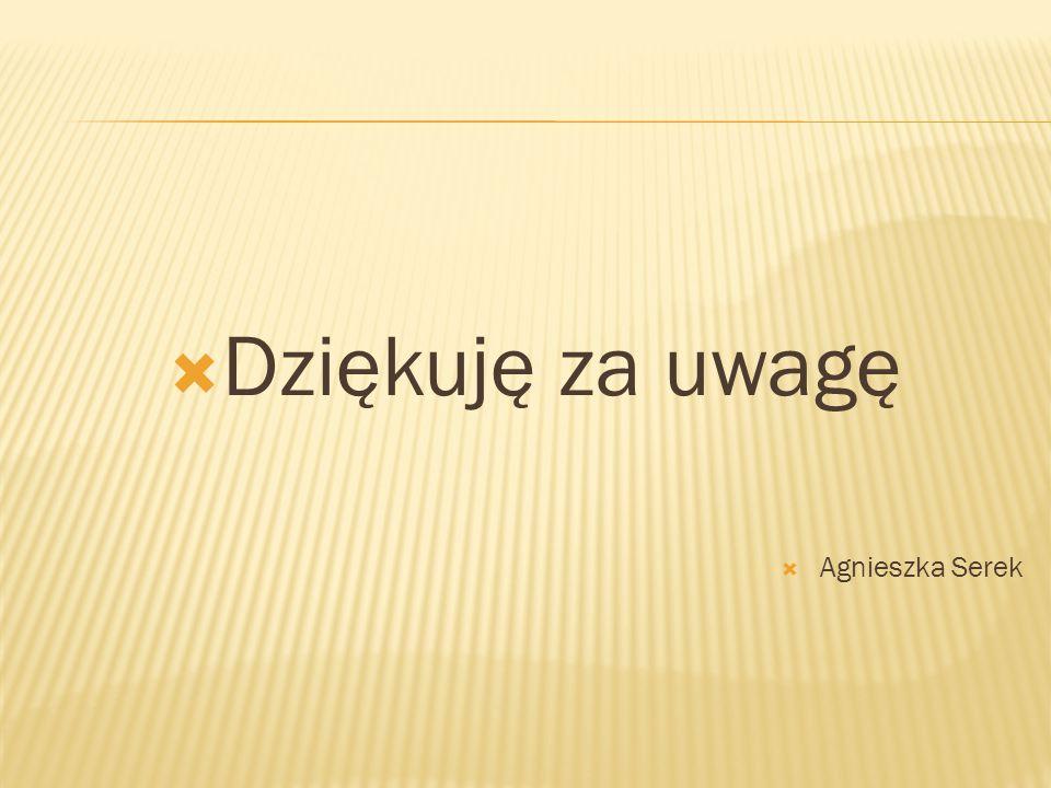  Dziękuję za uwagę  Agnieszka Serek