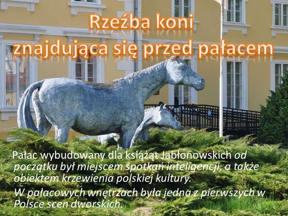 Pałac wybudowany dla książąt Jabłonowskich od początku był miejscem spotkań inteligencji, a także obiektem krzewienia polskiej kultury.