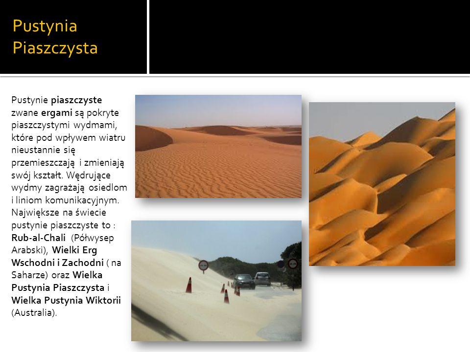 Pustynia Piaszczysta Pustynie piaszczyste zwane ergami są pokryte piaszczystymi wydmami, które pod wpływem wiatru nieustannie się przemieszczają i zmieniają swój kształt.