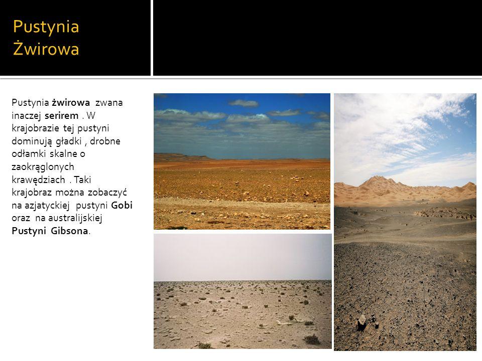 Pustynia Żwirowa Pustynia żwirowa zwana inaczej serirem.