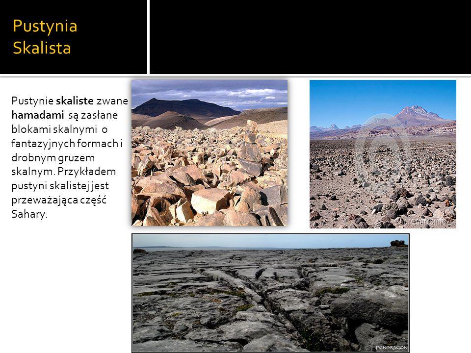 Pustynia Skalista Pustynie skaliste zwane hamadami są zasłane blokami skalnymi o fantazyjnych formach i drobnym gruzem skalnym.