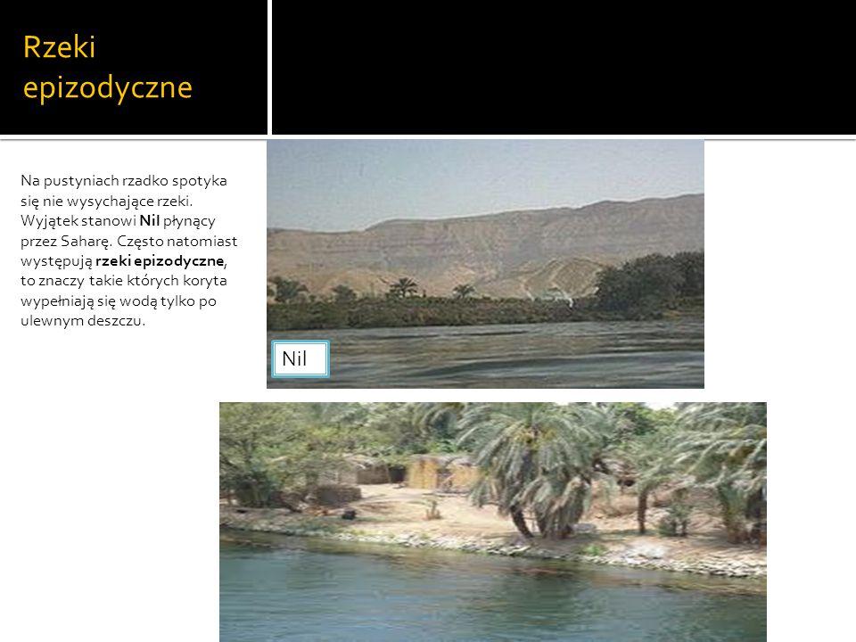 Rzeki epizodyczne Na pustyniach rzadko spotyka się nie wysychające rzeki.