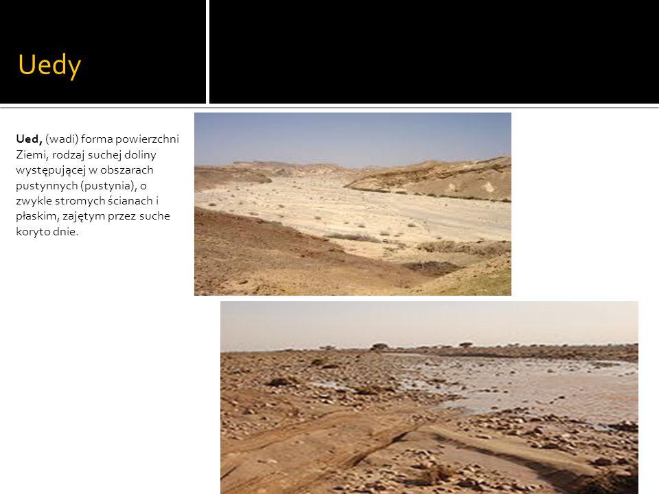 Uedy Ued, (wadi) forma powierzchni Ziemi, rodzaj suchej doliny występującej w obszarach pustynnych (pustynia), o zwykle stromych ścianach i płaskim, zajętym przez suche koryto dnie.