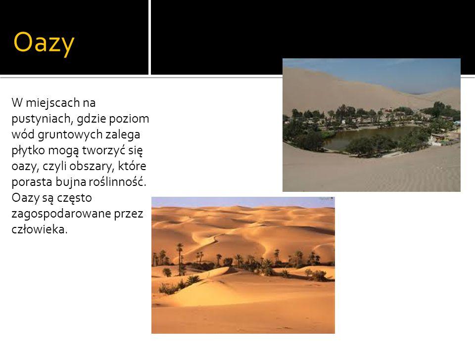 Oazy W miejscach na pustyniach, gdzie poziom wód gruntowych zalega płytko mogą tworzyć się oazy, czyli obszary, które porasta bujna roślinność.