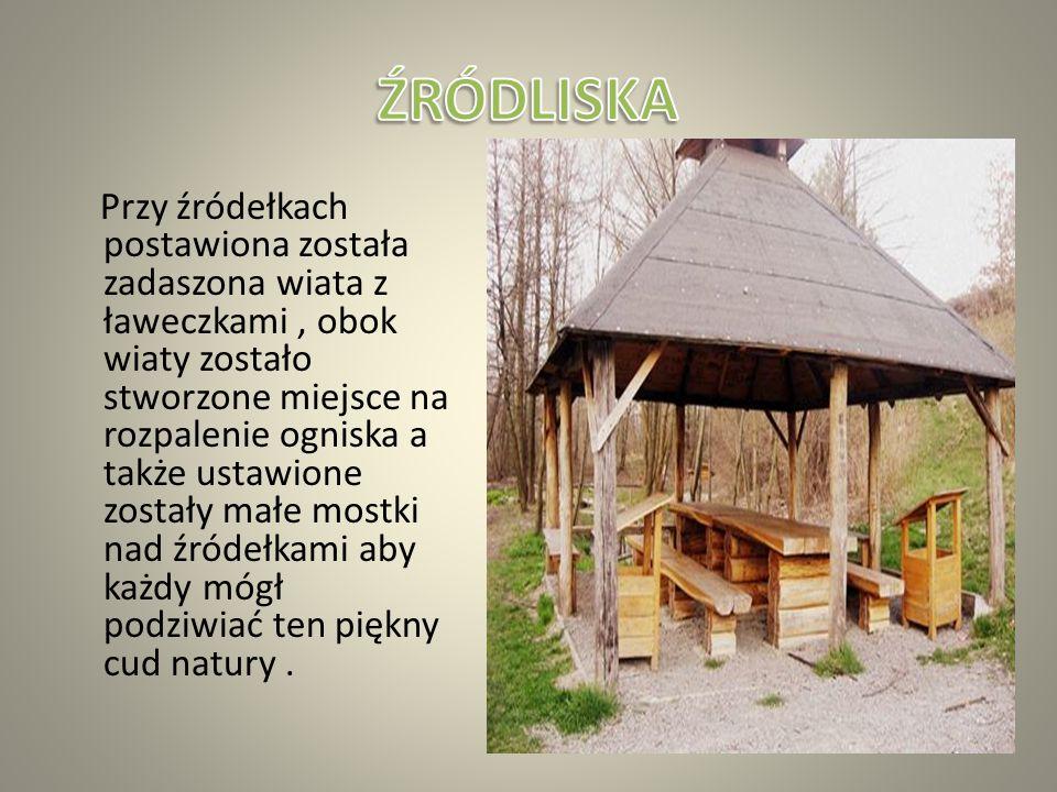 """W jednej z części wsi Łany znajduje sie pomnik przyrody nieożywionej zespół źródeł """"Źródliska w Łanach"""". Źródlisko zajmuje przestrzeń kilku dziecięciu"""