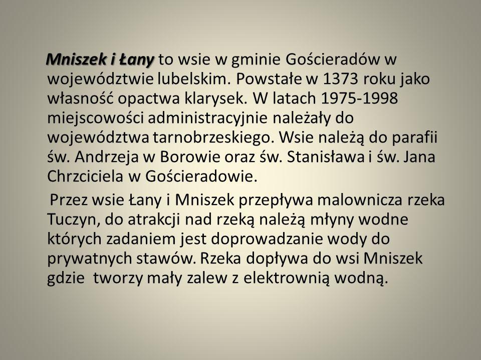 """W jednej z części wsi Łany znajduje sie pomnik przyrody nieożywionej zespół źródeł """"Źródliska w Łanach""""."""