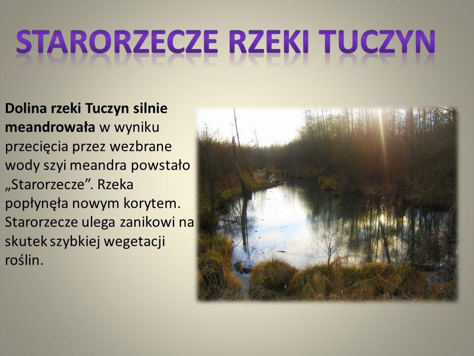 Mniszek i Łany Mniszek i Łany to wsie w gminie Gościeradów w województwie lubelskim. Powstałe w 1373 roku jako własność opactwa klarysek. W latach 197
