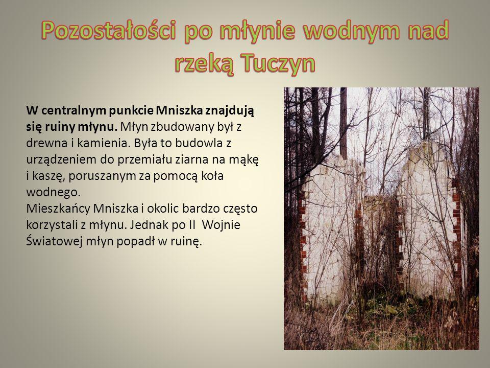 W centralnym punkcie Mniszka znajdują się ruiny młynu.