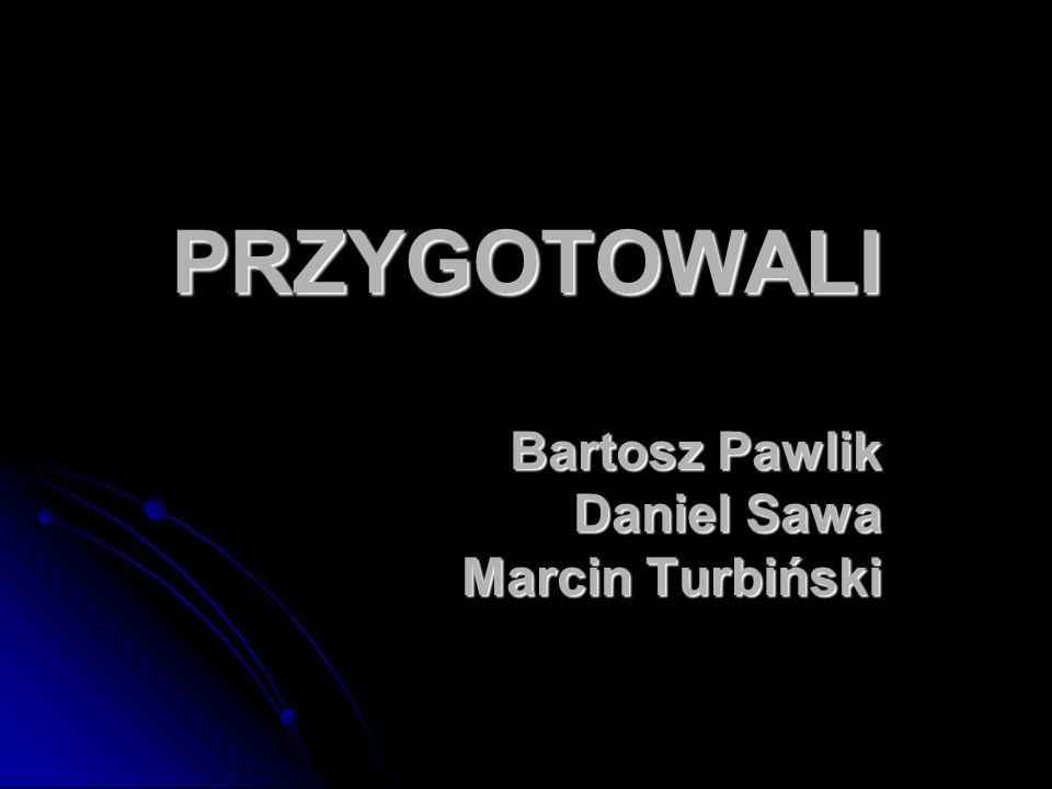 PRZYGOTOWALI Bartosz Pawlik Daniel Sawa Marcin Turbiński