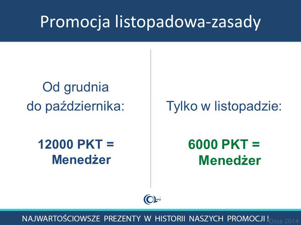 Promocja listopadowa-zasady Od grudnia do października: 12000 PKT = Menedżer Tylko w listopadzie: 6000 PKT = Menedżer