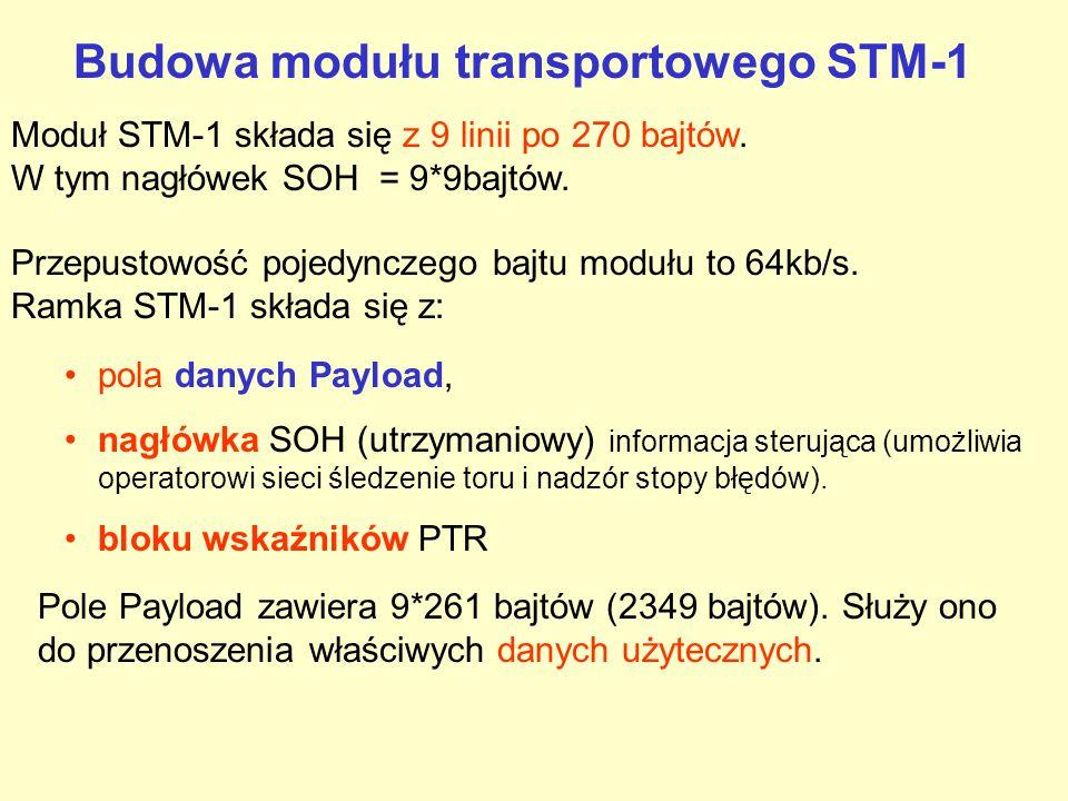 Podstawowa europejska jednostka transportowa STM-1 Synchronous Transport Module Synchroniczny Moduł Transportowy W czasie zwielokrotniania ma przepływność, będącą N-tą wielokrotnością STM-1 (155,52 Mbit/s).