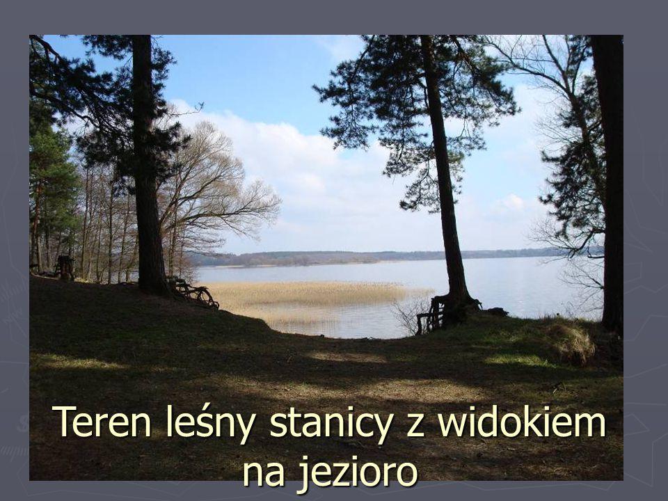 Teren leśny stanicy z widokiem na jezioro