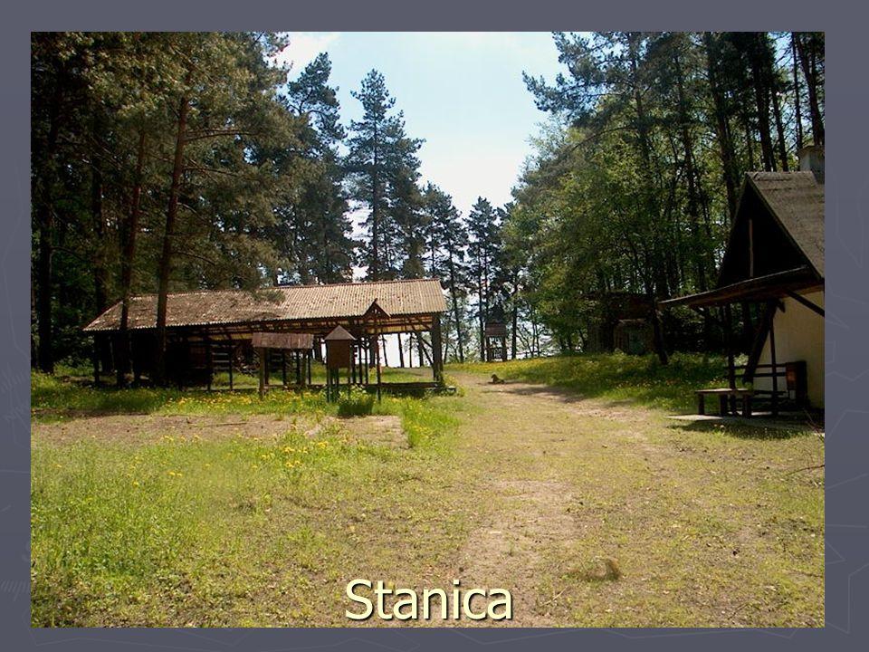 Stanica