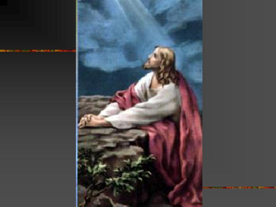 Całun! Jakież to wymowne orędzie cierpienia i miłości, śmierci i życia wiecznego! Całun pozwala nam zrozumieć doświadczenia, przez jakie zechciał prze