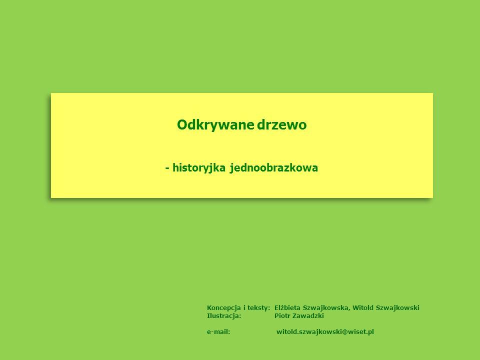 Odkrywane drzewo - historyjka jednoobrazkowa Odkrywane drzewo - historyjka jednoobrazkowa Koncepcja i teksty: Elżbieta Szwajkowska, Witold Szwajkowski