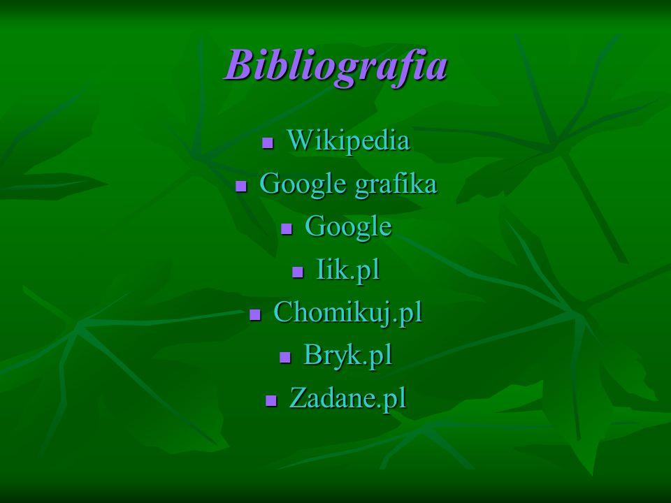 Bibliografia Wikipedia Wikipedia Google grafika Google grafika Google Google Iik.pl Iik.pl Chomikuj.pl Chomikuj.pl Bryk.pl Bryk.pl Zadane.pl Zadane.pl