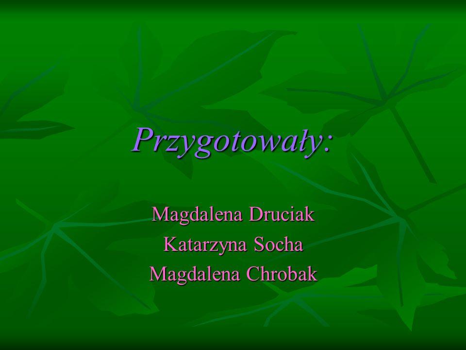 Przygotowa ł y: Magdalena Druciak Katarzyna Socha Magdalena Chrobak