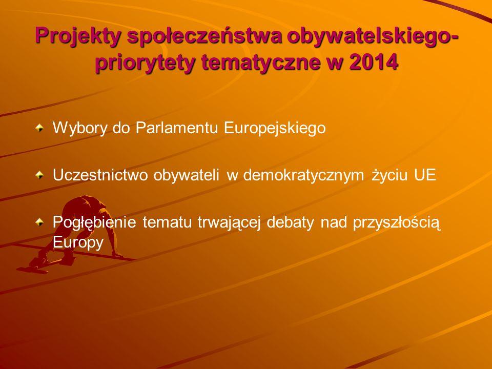 Projekty społeczeństwa obywatelskiego- priorytety tematyczne w 2014 Wybory do Parlamentu Europejskiego Uczestnictwo obywateli w demokratycznym życiu U