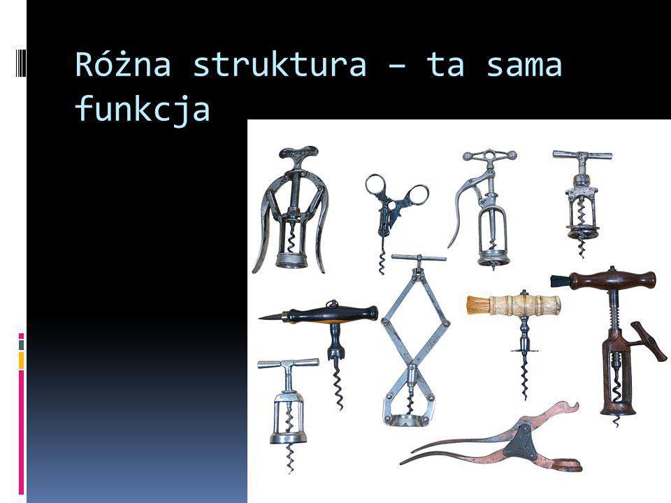 Różna struktura – ta sama funkcja