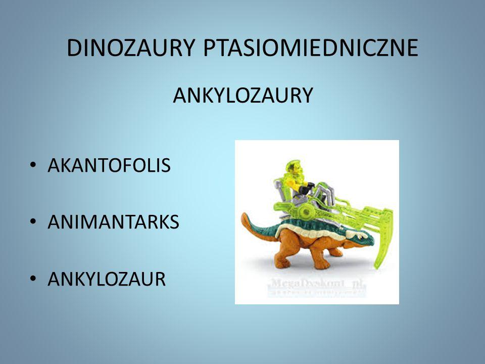 DINOZAURY PTASIOMIEDNICZNE AKANTOFOLIS ANIMANTARKS ANKYLOZAUR ANKYLOZAURY