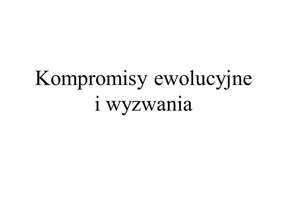 Współczynnik encefalizacji (EQ) – miara wielkości mózgu w stosunku do wielkości ciała: Szympans = 2 Australopitek = 2,5, wczesne Homo = 3.1, wczesne Homo erectus = 3.3, współcześni ludzie = 5.8.