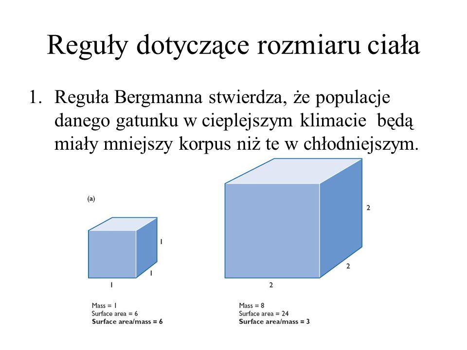 Reguły dotyczące rozmiaru ciała 1.Reguła Bergmanna stwierdza, że populacje danego gatunku w cieplejszym klimacie będą miały mniejszy korpus niż te w chłodniejszym.