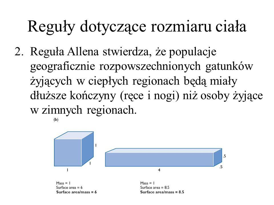 Reguły dotyczące rozmiaru ciała 2.Reguła Allena stwierdza, że populacje geograficznie rozpowszechnionych gatunków żyjących w ciepłych regionach będą miały dłuższe kończyny (ręce i nogi) niż osoby żyjące w zimnych regionach.