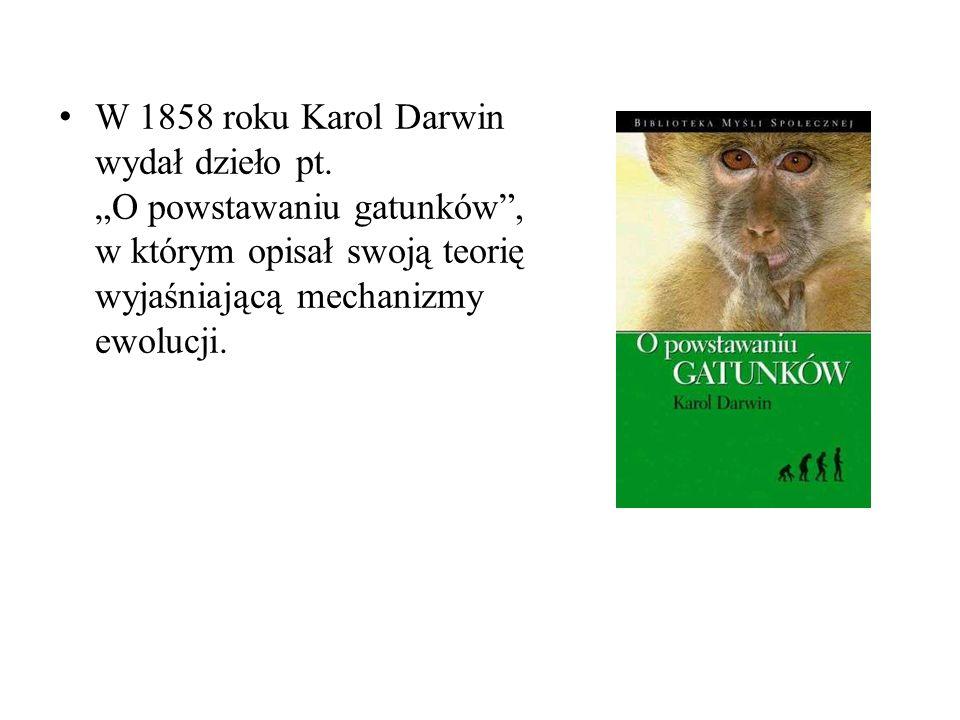 Prawa Darwina prawo zmienności powszechnej i bezkierunkowej, które mówi, że gatunki charakteryzuje duża zmienność dziedziczna i nie dziedziczna, jedynie zmiany dziedziczne mają znaczenie w ewolucji,