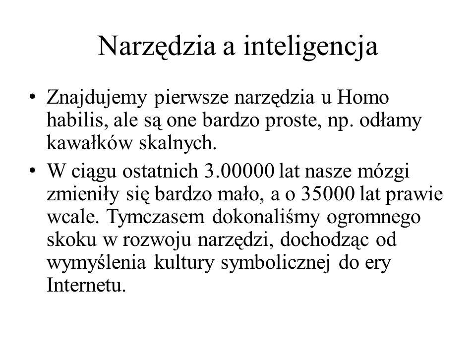 Narzędzia a inteligencja Znajdujemy pierwsze narzędzia u Homo habilis, ale są one bardzo proste, np.