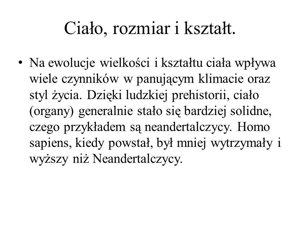 Izabela Postolska Filip Różanek Joanna Szczelaszczyk Malwina Witkowska Dziękujemy za uwagę