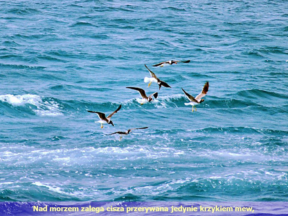 Nad morzem zalega cisza przerywana jedynie krzykiem mew,