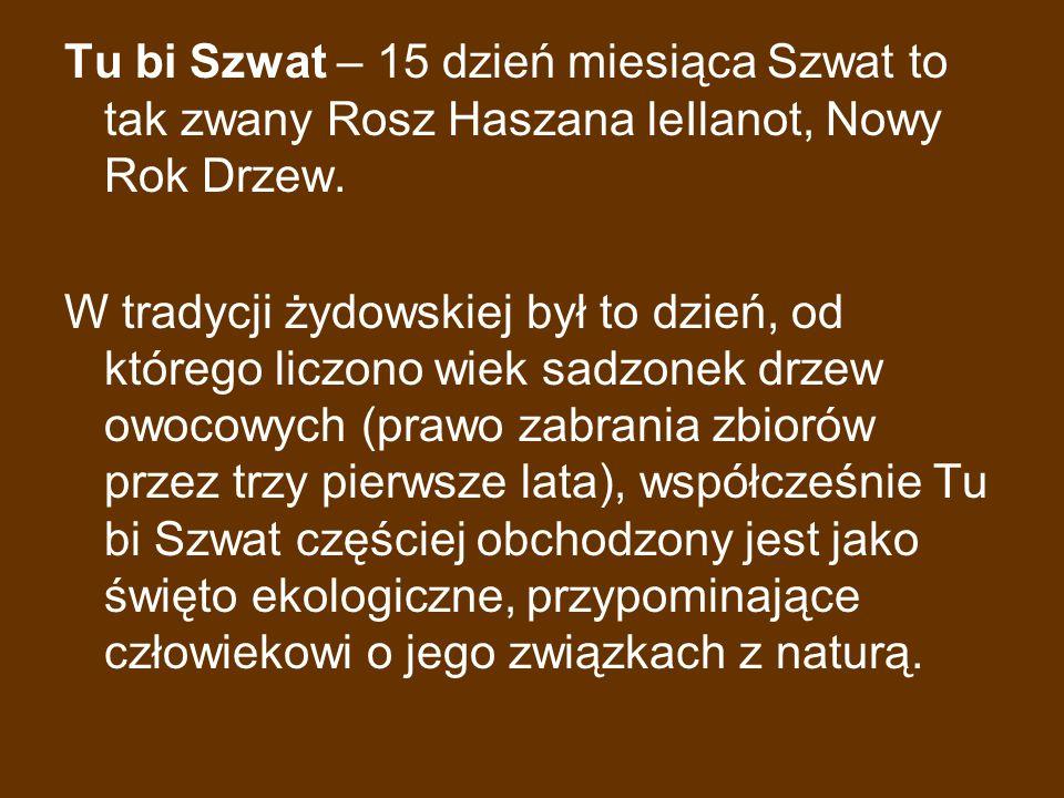 Tu bi Szwat – 15 dzień miesiąca Szwat to tak zwany Rosz Haszana leIlanot, Nowy Rok Drzew. W tradycji żydowskiej był to dzień, od którego liczono wiek