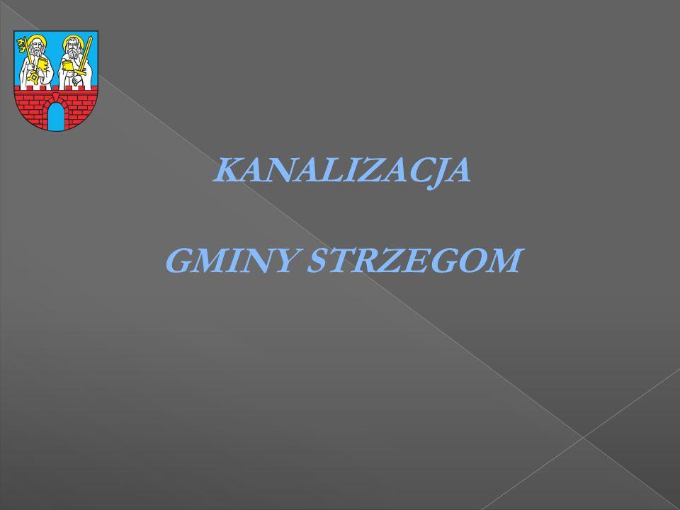 Dzięki dobrej współpracy pomiędzy gminą Strzegom a Powiatem w Świdnicy zbudowano boisko wielofunkcyjne na terenie Zespołu Szkół w Strzegomiu przy ul.