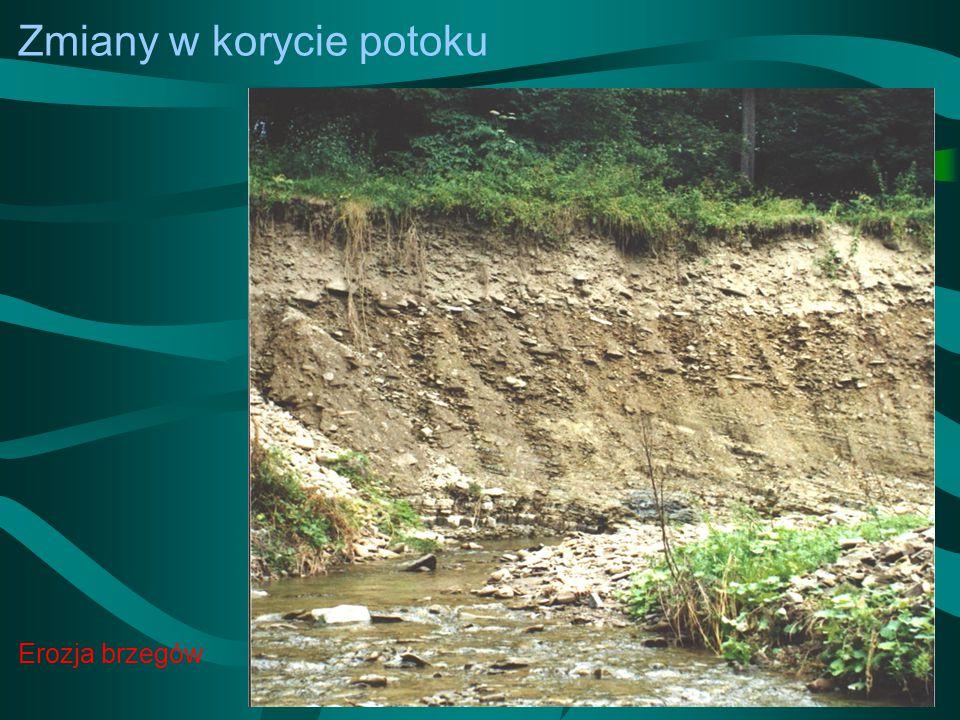 Zmiany w korycie potoku Erozja brzegów