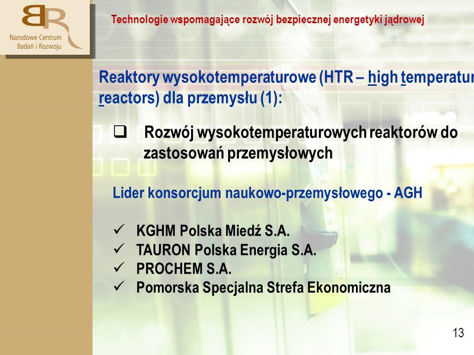 13 Technologie wspomagające rozwój bezpiecznej energetyki jądrowej Reaktory wysokotemperaturowe (HTR – high temperature reactors) dla przemysłu (1):  Rozwój wysokotemperaturowych reaktorów do zastosowań przemysłowych Lider konsorcjum naukowo-przemysłowego - AGH KGHM Polska Miedź S.A.