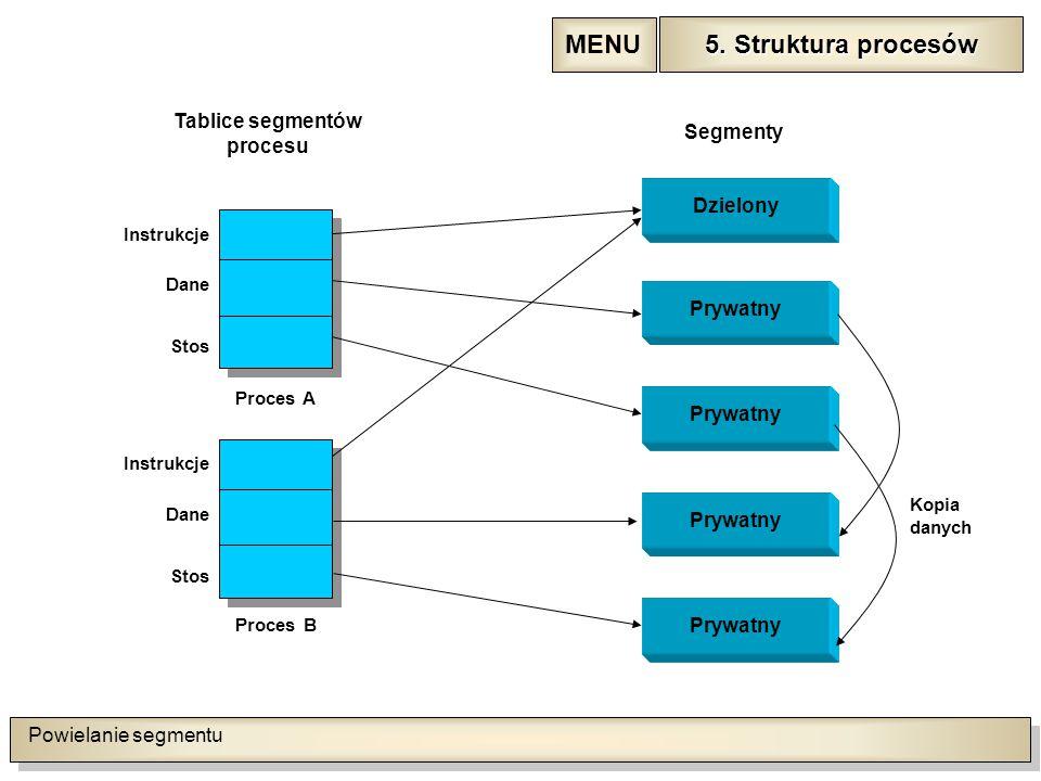 Powielanie segmentu 5. Struktura procesów 5.