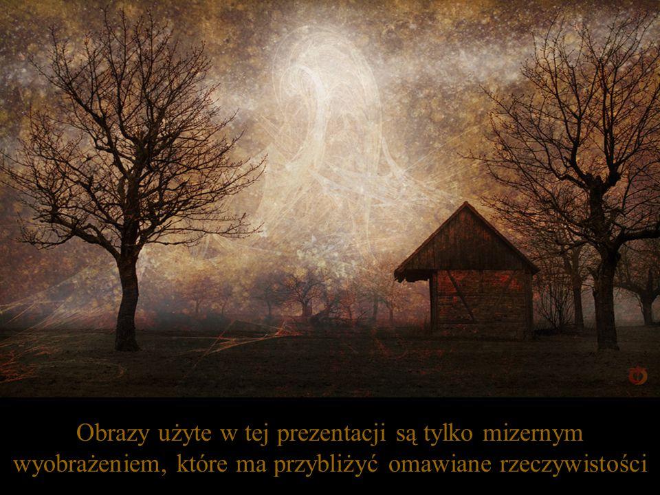 Ogień oczyszcza, ponieważ jest rozpalony przez łaskę Bożej miłości