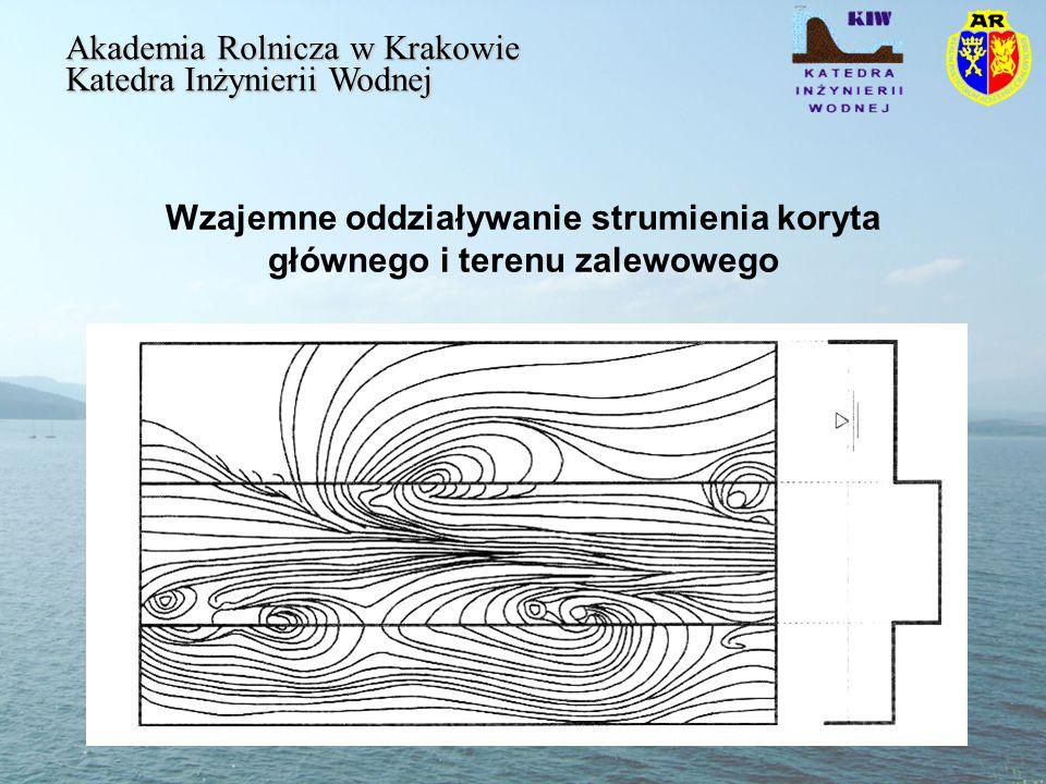 Wzajemne oddziaływanie strumienia koryta głównego i terenu zalewowego Akademia Rolnicza w Krakowie Katedra Inżynierii Wodnej