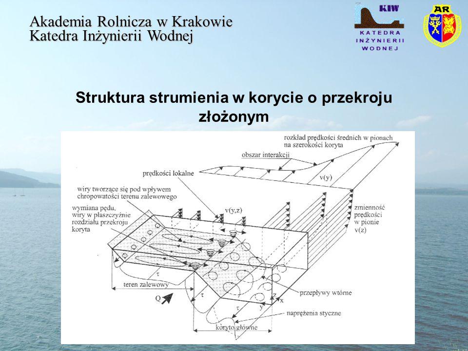 Struktura strumienia w korycie o przekroju złożonym Akademia Rolnicza w Krakowie Katedra Inżynierii Wodnej